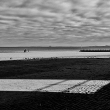 Portobello Shadows #6