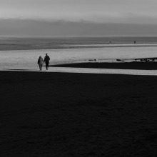 Portobello Shadows #7