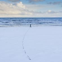 Portobello Winter #4